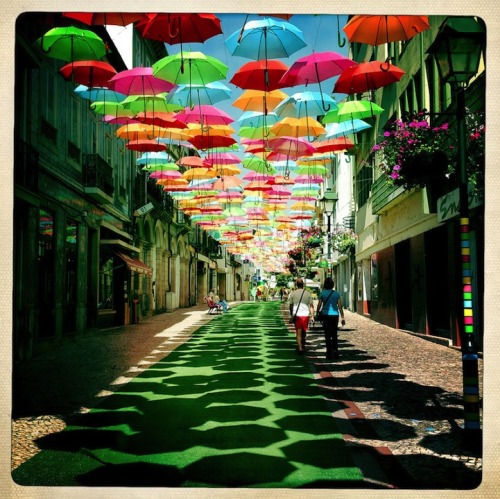 Surreal Avenue. Colorful umbrellas float over promenades in this whimsical public art project in Águeda, Portugal. Photos by Patrícia Almeida. Click the pic for more.