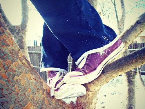 this is a picture from a few years ago, it's of my converse! it's surprising that it snowed here in Texas because it rarely does :)