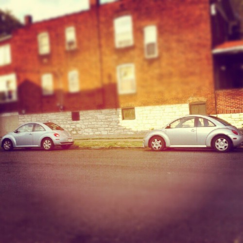 Love Bugs (Taken with Instagram at Hartford St.)