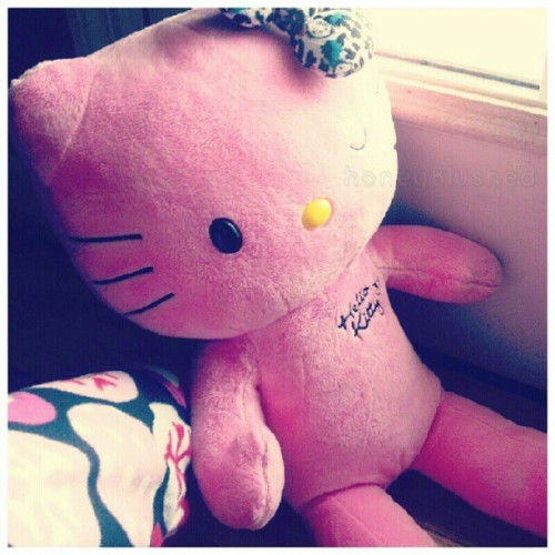 "bunicakes:  Had to name the #hellokitty cause even my laptop has a nickname, from now on she's called Mimochi, ""Mimi"" for short! #kawaii #cute #pink #buildabear (Taken with Instagram)"