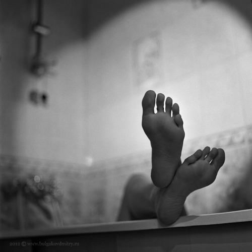9 toes (10 actually, but I first counted 9). Photo by Bulgakov Dmitry.