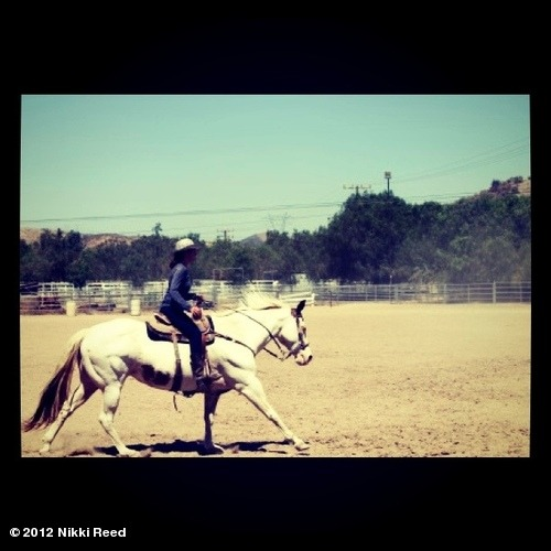 Beautiful day spent out at the ranch with the horses… View more Nikki Reed on WhoSay