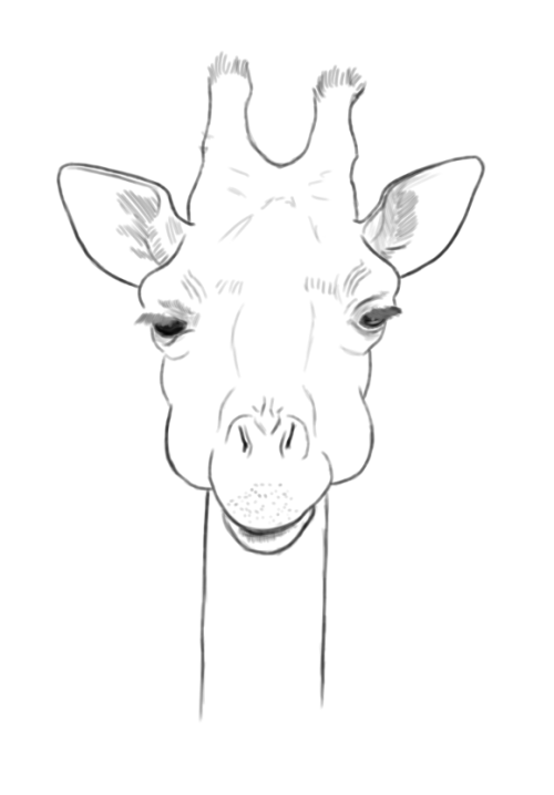 a giraffe I drew while I was on the phone…