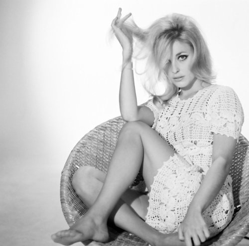 thegorgeoushussy:  Rest in peace Sharon Tate - January 24, 1943 – August 9, 1969