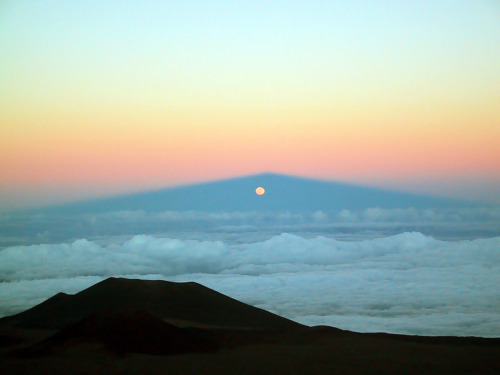 My favorite time of day! Moonrise! n-a-s-a:  Moonrise Through Mauna Kea's Shadow  Credit & Copyright: Michael Connelley