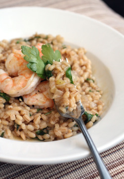 Barley risotto with shrimps: amazing!