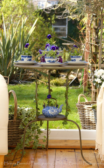 dyingofcute:  blue tea party for flowers