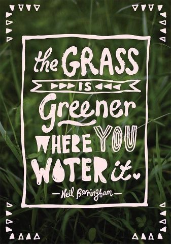 The Grass is Greener where YOU water it. (via www.sun-gazing.com)