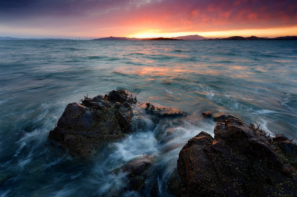 Ripper — Point Isabel, Richmond, California (by Jeff Swanson — www.interfacingnature.com)