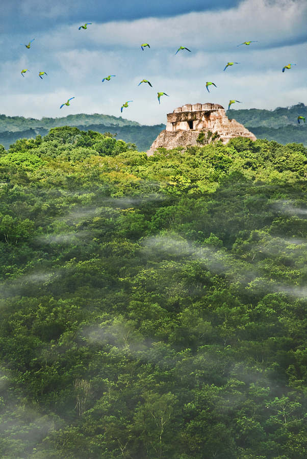 ancient-magics:  Maya 2012 by Tony Rath The Maya site of Xunantunich in Belize rises above the jungle and clouds as a flock of parakeets fly over in the early morning light.