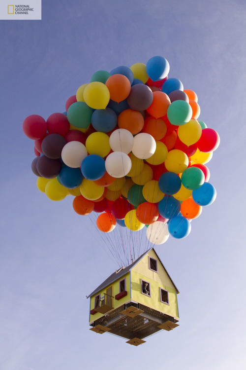"alecshao:  National Geographic's Real-Life 'Up' House (2011) ""Inspired by Pixar's animated film Up, National Geographic Channel and a team of scientists, engineers, and two world-class balloon pilots successfully launched a 16' X 16' house 18' tall with 300 8' colored weather balloons from a private airfield east of Los Angeles, and set a new world record for the largest balloon cluster flight ever attempted. The entire experimental aircraft was more than 10 stories high, reached an altitude of over 10,000 feet, and flew for approximately one hour."""