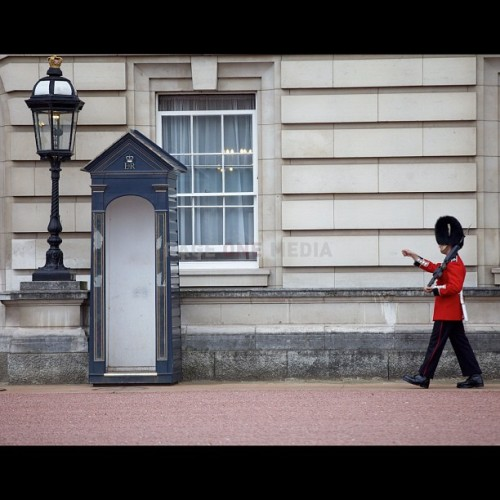 Pacing… - photo by @RageOneMedia (Karl Ferguson) #buckinghampalace #london  (Taken with Instagram)