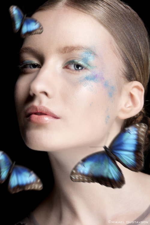 mikaelgfoto:  Butterfly III Make up by Anna Göransson
