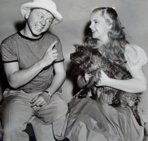 goingovertherainbow:  1/50 photos of Mickey Rooney and Judy Garland
