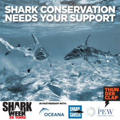 sharkweek:  Have you joined the cause yet? We've partnered with Thunderclap to promote the shark conservation efforts of the Pew Research Foundation, Oceana, and Shark Savers. Visit our Thunderclap page to donate a tweet or Facebook status update to help save sharks. http://bit.ly/OU8inN