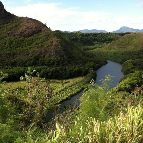 barelysuppressedfirth:  the wailua river- kauai