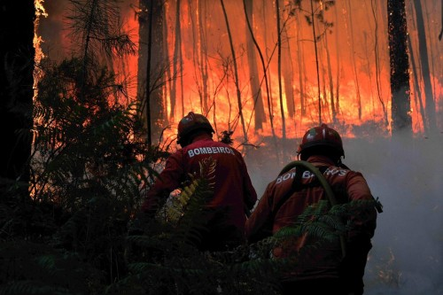 Firefighters tried to extinguish flames in a forest fire near Viseu, Portugal on Thursday August 9, 2012.