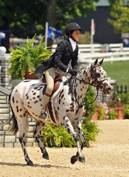 diaryofaworkingstudent:  Goose Bumps and Charleez Simcik in the Small Ponies at Pony Finals