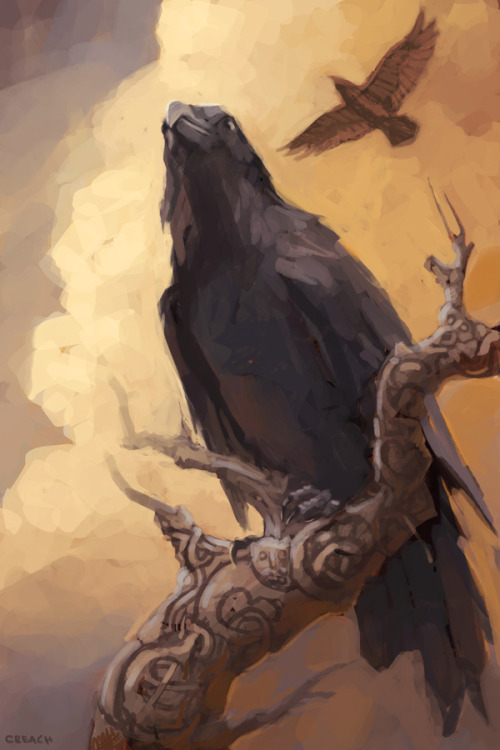 "muninandhugin:  thecandidcrow:  Huginn and Muninn  In Norse mythology, Huginn (meaning ""thought"") and Muninn (meaning ""memory"" or ""mind"") are a pair of ravens that fly all over the world, Midgard, and bring the god Odin information. [x]   *waves*"