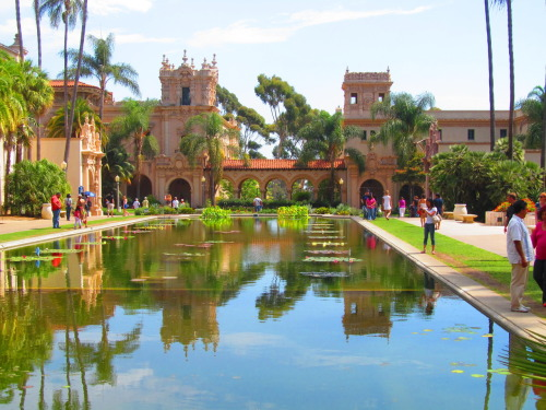 Everything is beautiful in Balboa park.