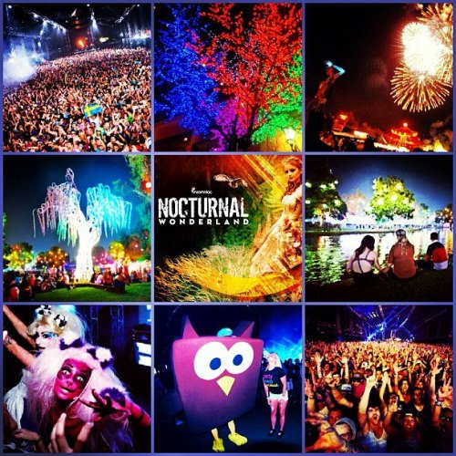The journey to Nocturnal Wonderland is approaching…