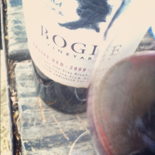 Friday. #bogle #wine #california  (Taken with Instagram at Bogle Vineyards)