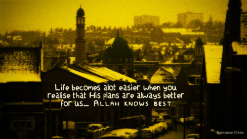 Life becomes a lot easier when you realise that His plans are always better for us…Allah knows best