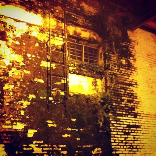 Alley window, Abott & Carroll (Taken with Instagram)