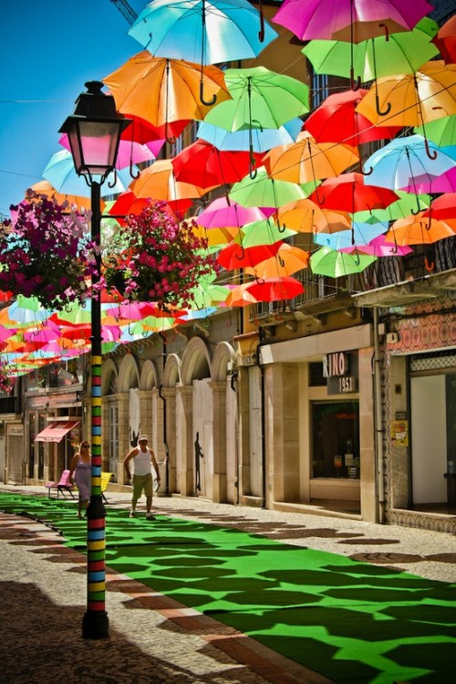 Beautiful Umbrella Art Installation in Portugal #colour dyingofcute:  Beira Litoral, Portugal