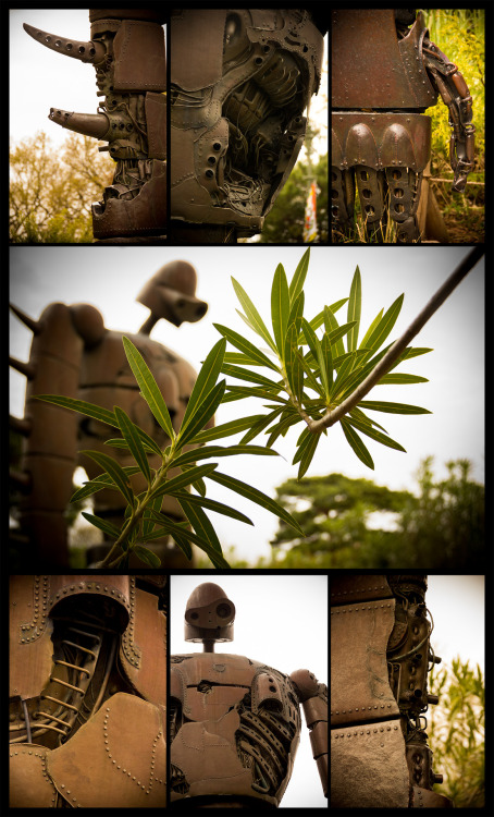 I made a photoset of the pictures I took while at the Studio Ghibli Museum in Tokyo. This is the statue of the robot from Castle in the Sky (1986). I thought you movie nerds might like it. If you want to find any more of my photography you can follow writephotography.tumblr.com.