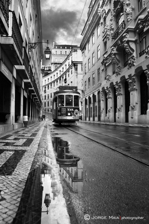 "vmburkhardt:  vmburkhardt: (via 500px / Photo ""Lisbon"" by Jorge Maia)"
