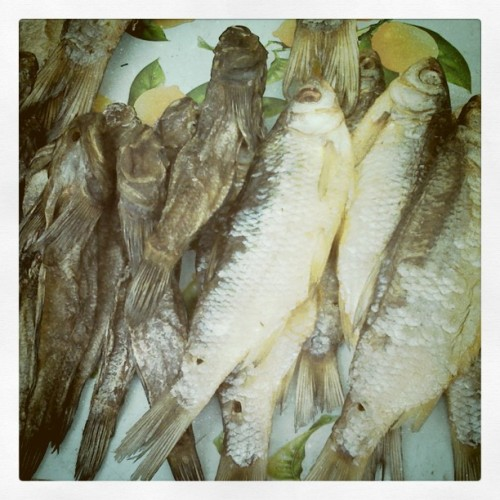 Dried fish snack #Odessa #fish #ukrsnack (Taken with Instagram at Пляж Робинзон)