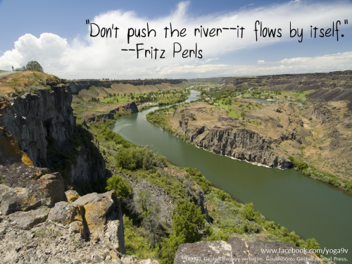 """Don't push the river—it flows by itself."" —Fritz Perls Yoga Nine Vipassana"