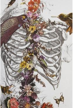 birds vintage artwork corpse floral