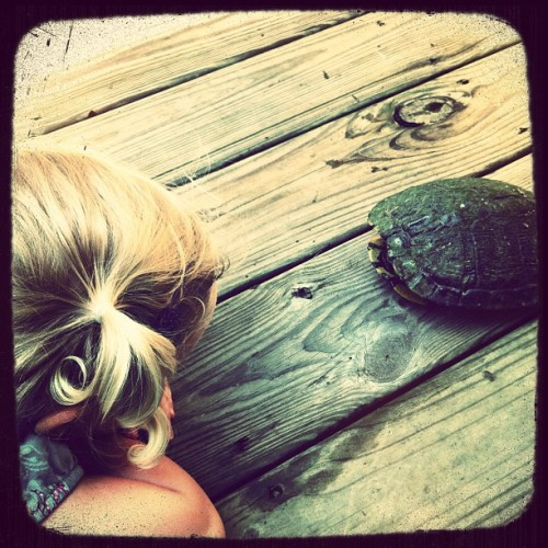 Greeting a new friend rescued from the road #turtle #power #brannan (Taken with Instagram)