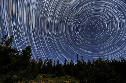 Perseid Meteors Penetrating Circumpolar Star Trails by Fort Photo on Flickr. I sure hope the sky clears tonight so I can see some Perseids!