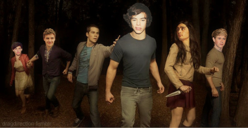 One Direction/Teen Wolf cross over, anyone?