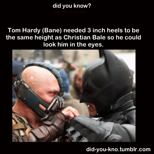 did-you-kno:  Source  hahah poor Bane