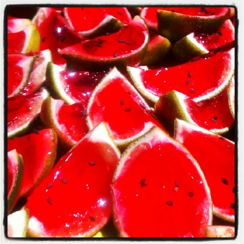Watermelon Jello shots!  (Taken with Instagram)