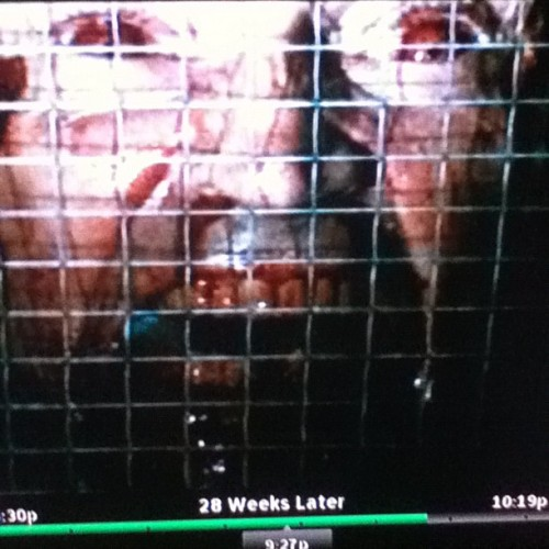 28 weeks later with MAH BRO. @andrewmiller7 (Taken with Instagram)