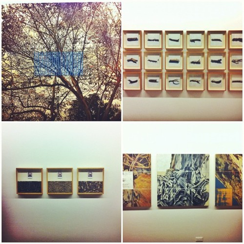 @soler STATIC NATURE! #art #solersantos #exhibit #finale  (Taken with Instagram at Finale Art File)