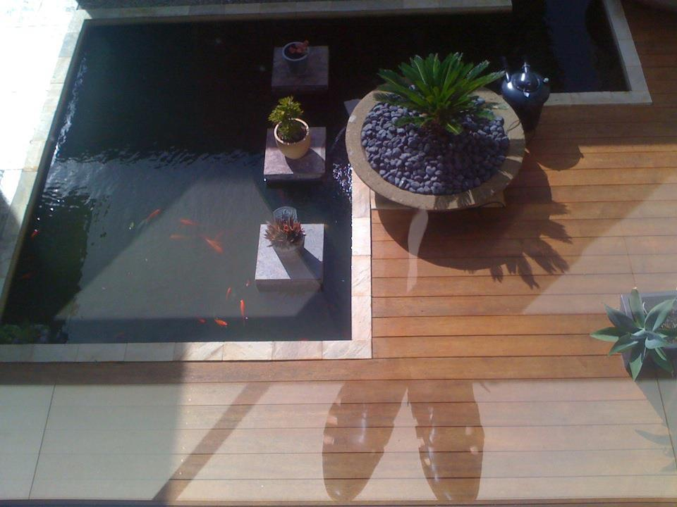 sun and koi and my feet