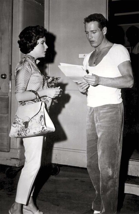 theniftyfifties:  Elizabeth Taylor and Paul Newman on the set of 'Cat on a Hot Tin Roof', 1958.