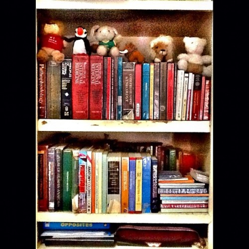 My mini home library. At last na-organize ko na lahat ng books na magagamit ko. :D #books #library #medicine #student (Taken with Instagram)