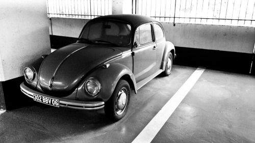 Surveillance shot Starring: Volkswagen Beetle (by Max.photographies)