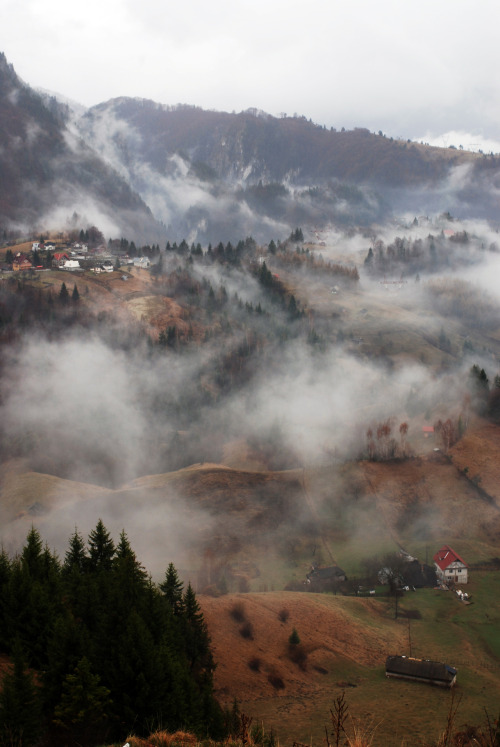 travelmoments:  Romania - Transylvania at it's best. taken: end of april, 2012.