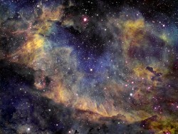 The Cygnus nebula