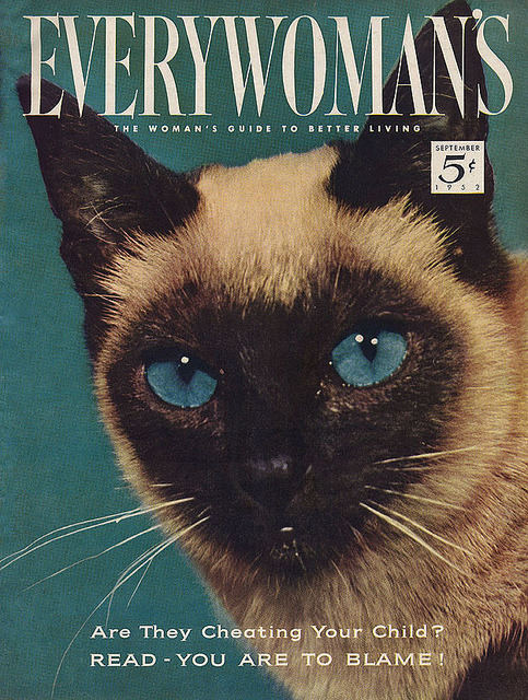Everywoman's Cover, 1952 by alsis35 on Flickr, who notes:  From the September issue. For the record, the article inside is about getting cool stuff for your kids' schools, not about the ever-present Feline Menace.