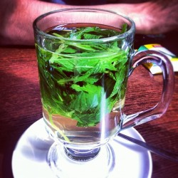 #mint + #honey #tea  (Taken with Instagram)