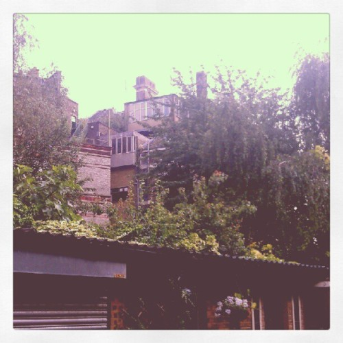 Sometimes its hard to believe this is central London… (Taken with Instagram)